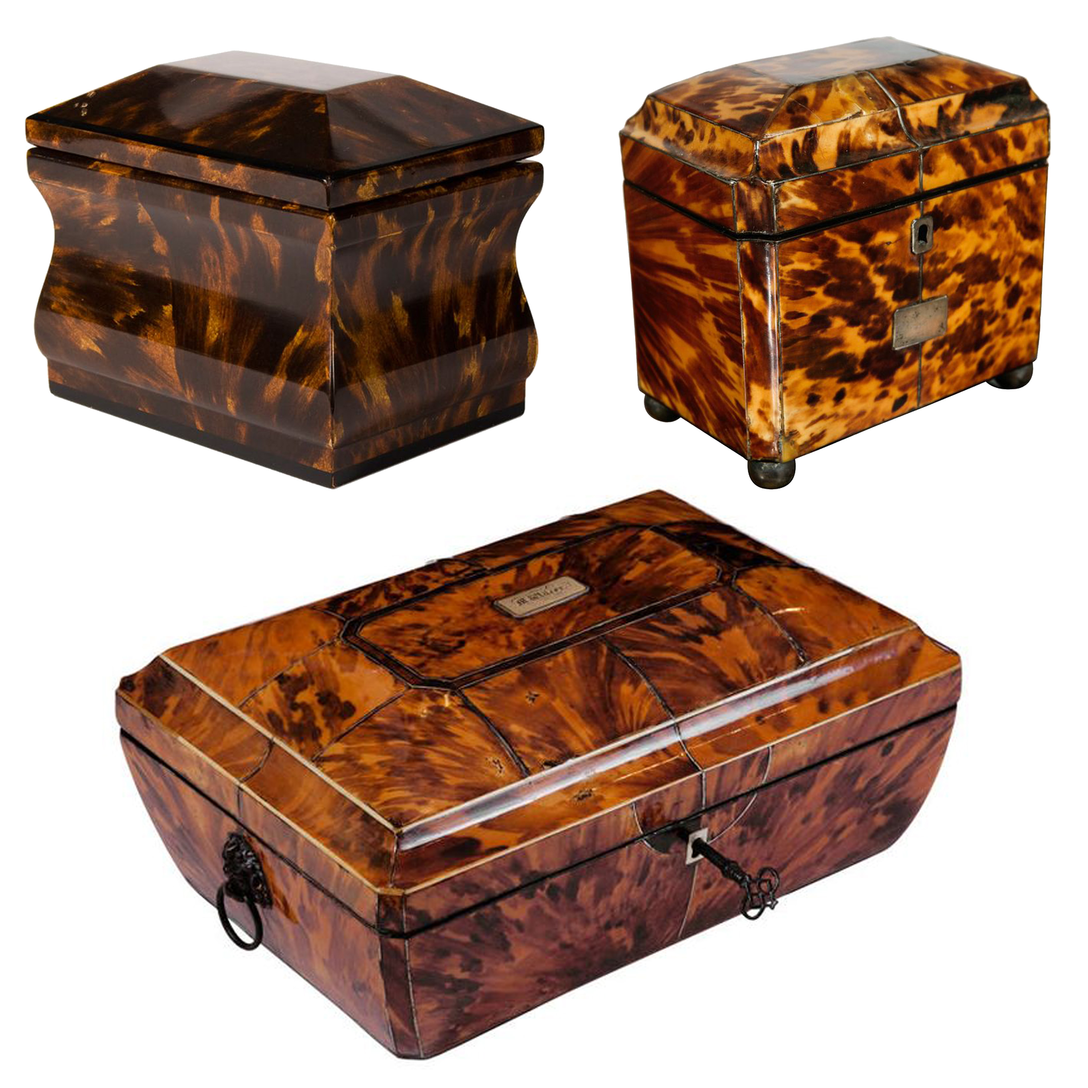 """""""What's In Your Collection"""": Antique Tortoise Shell"""