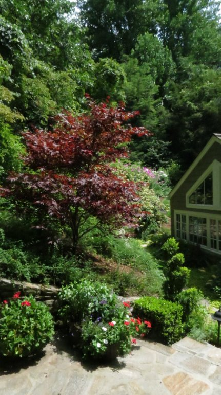 in the garden with kathryn greeley north carolina interior designer presents late july and august in the garden